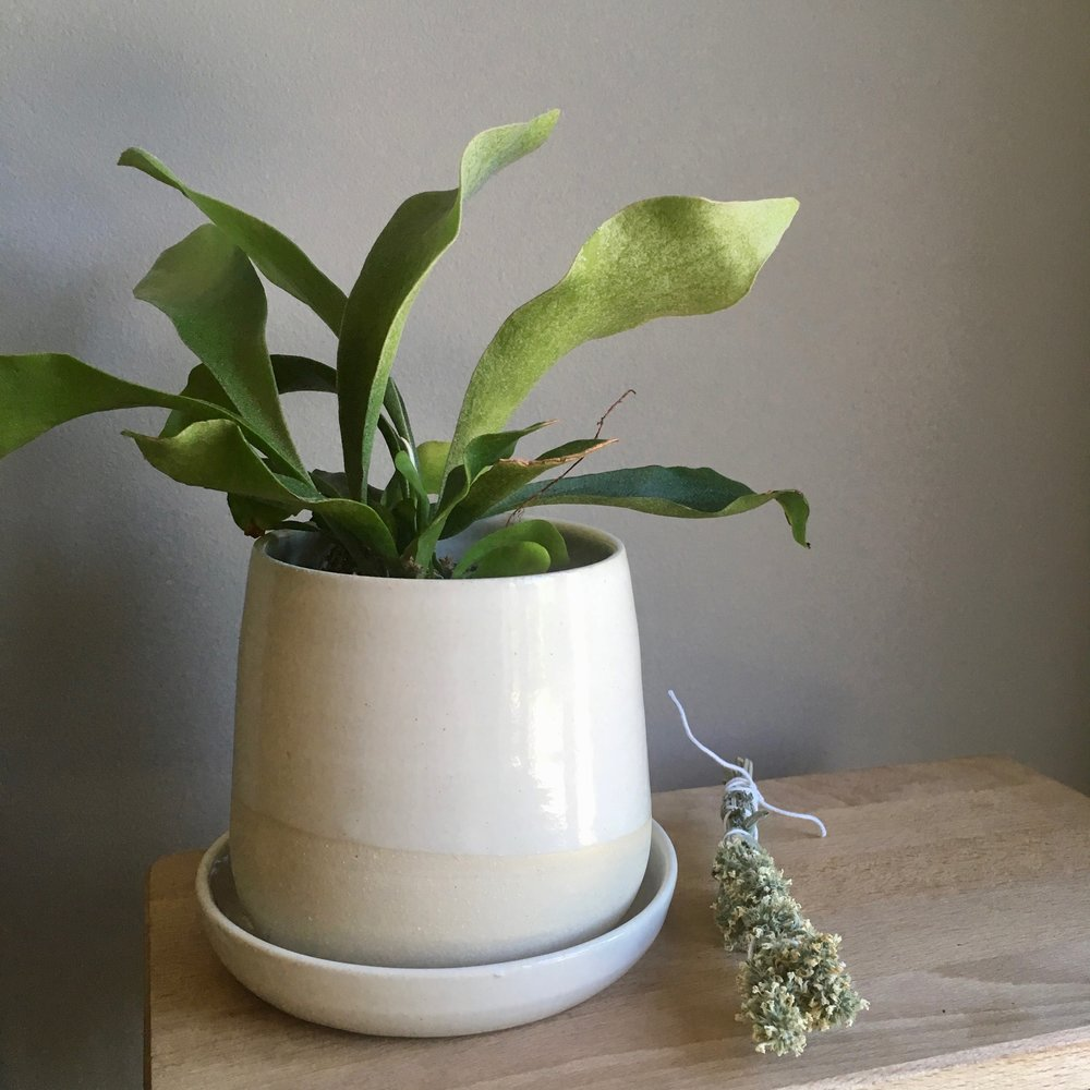 Form Planter no.2