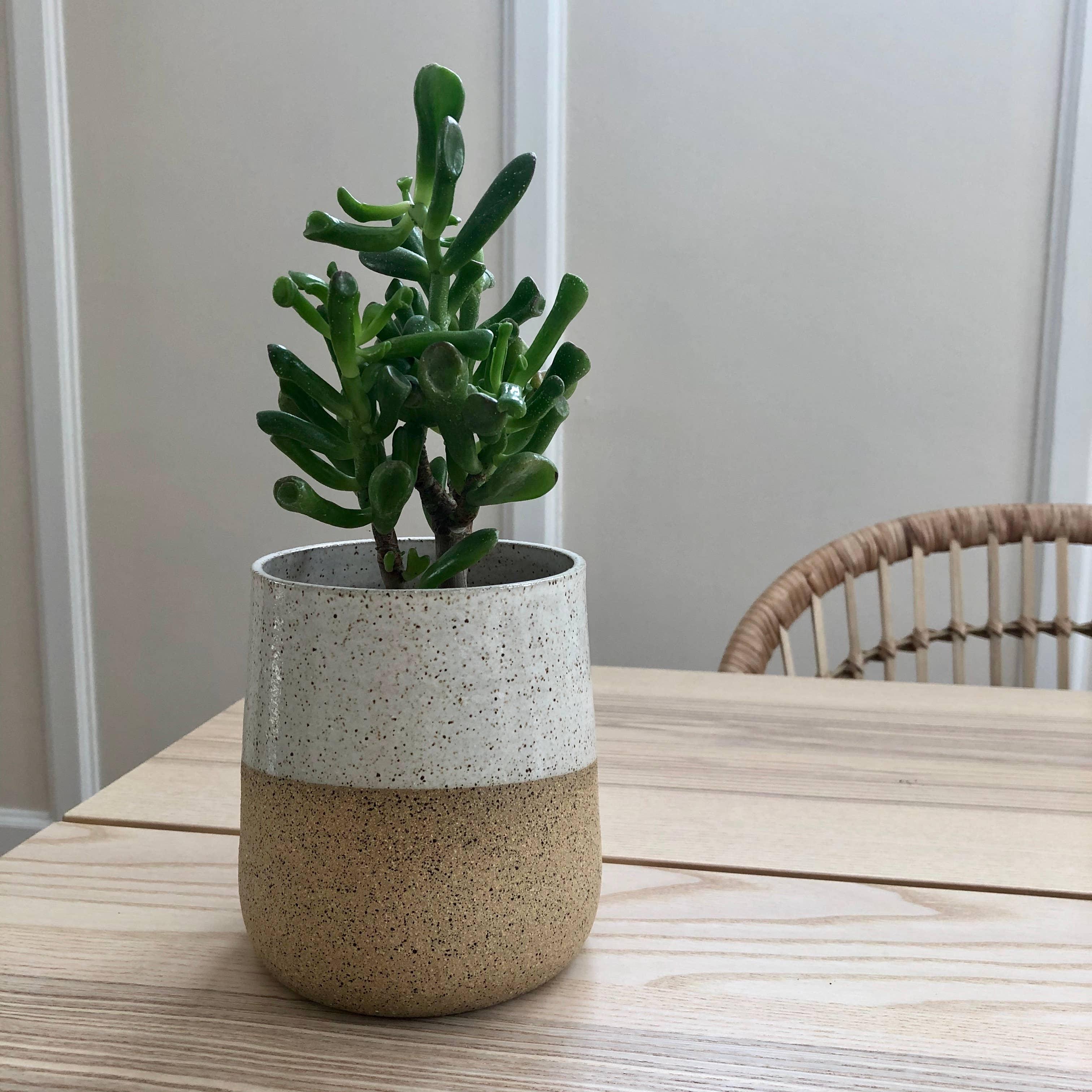 Form no.2 Speckled Planter