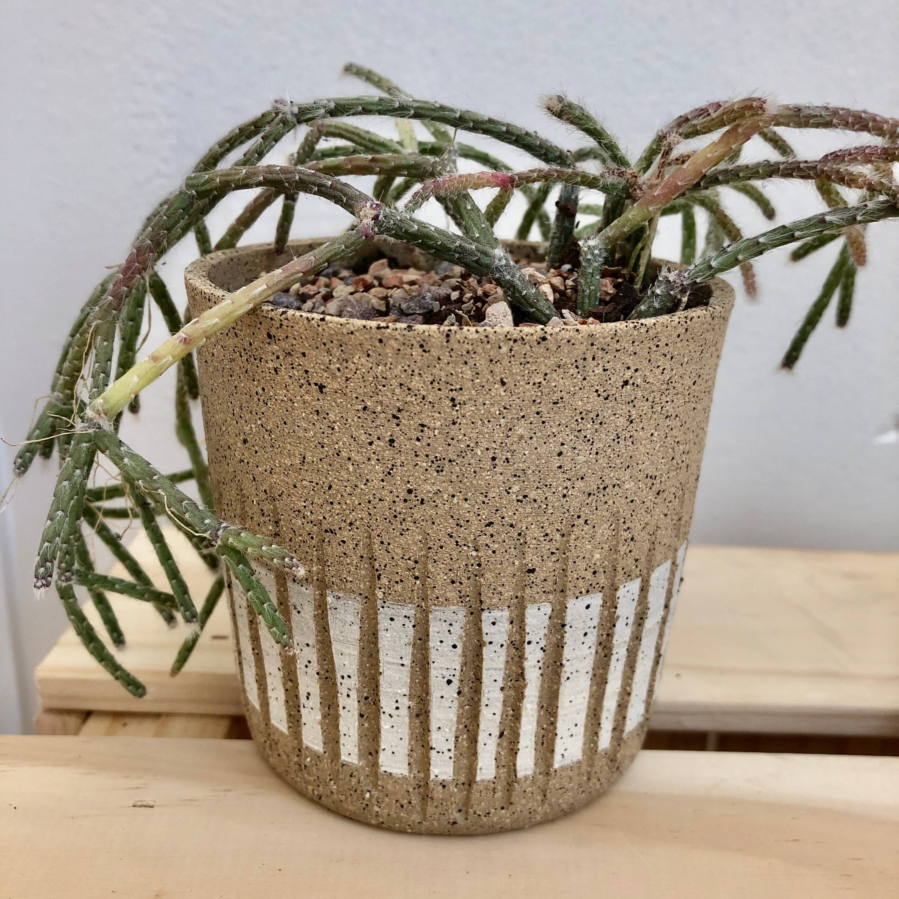 Mini Speckled Groove Planter