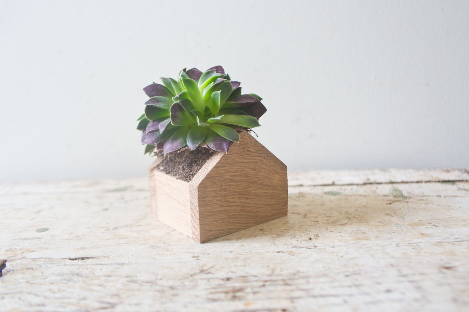 House Planter in Oak