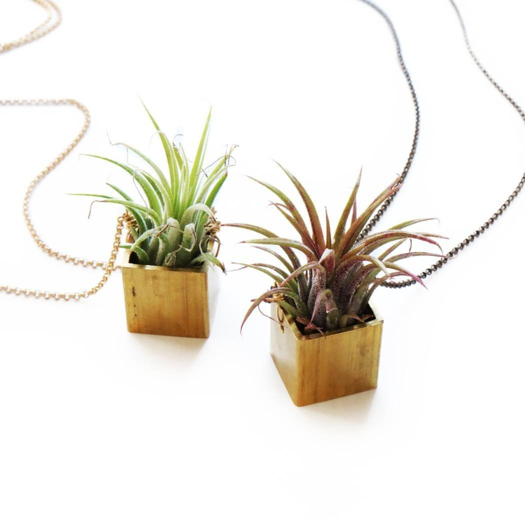 Ceres Airplant Necklace in Matte Gold