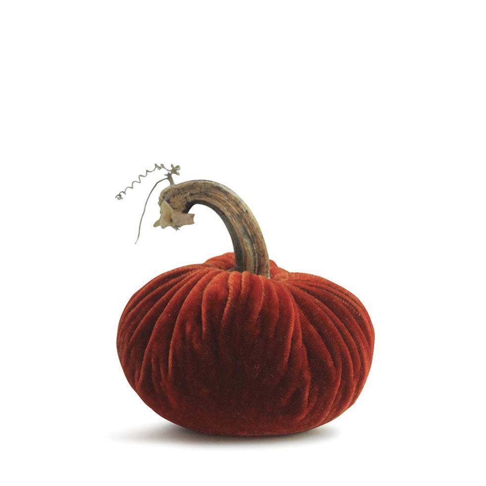 6 Velvet Pumpkin