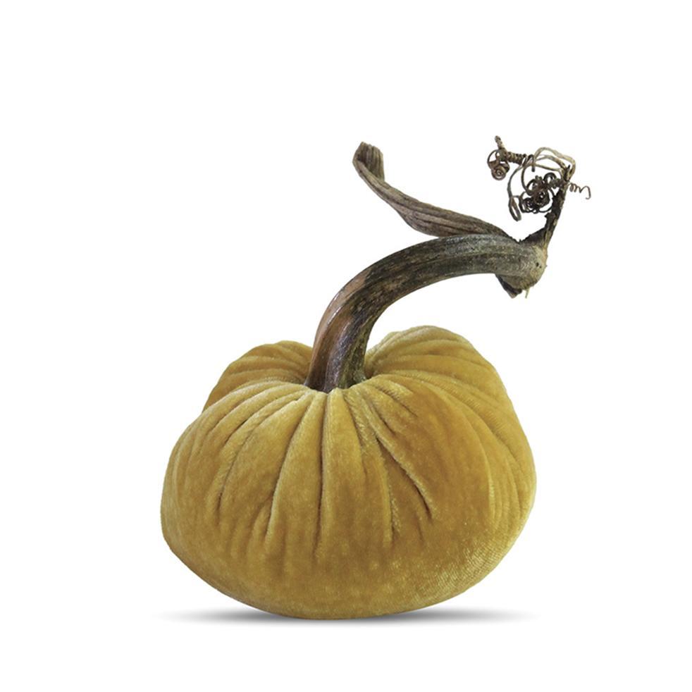 4 Velvet Pumpkin