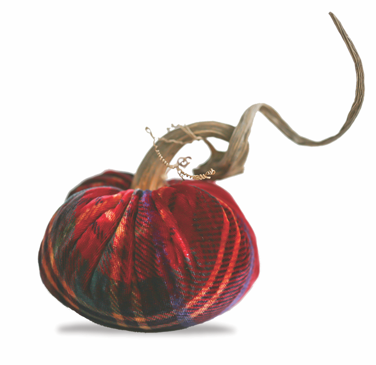 5 Red Plaid Velvet Pumpkin
