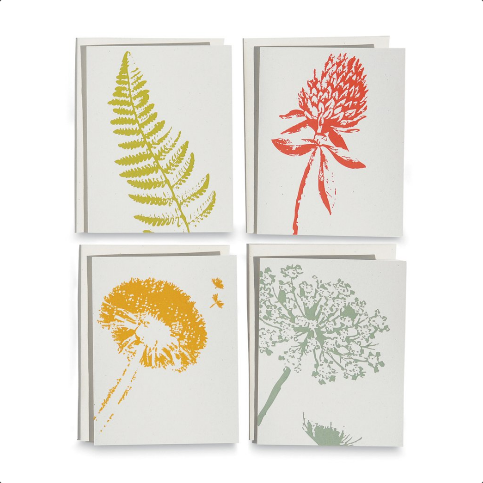 Wild Pretties Card Set/8