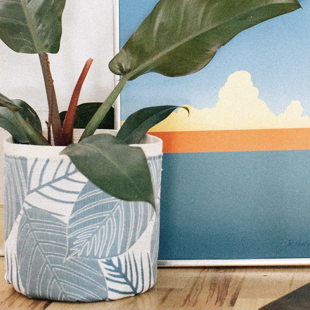 Croton Blue Plant Sax
