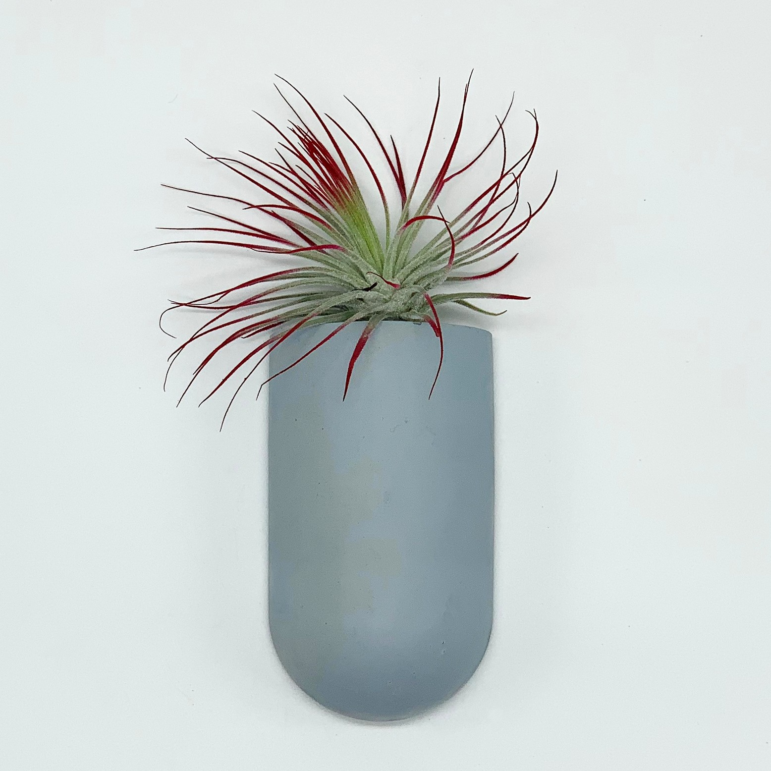 Wall Pocket Planter