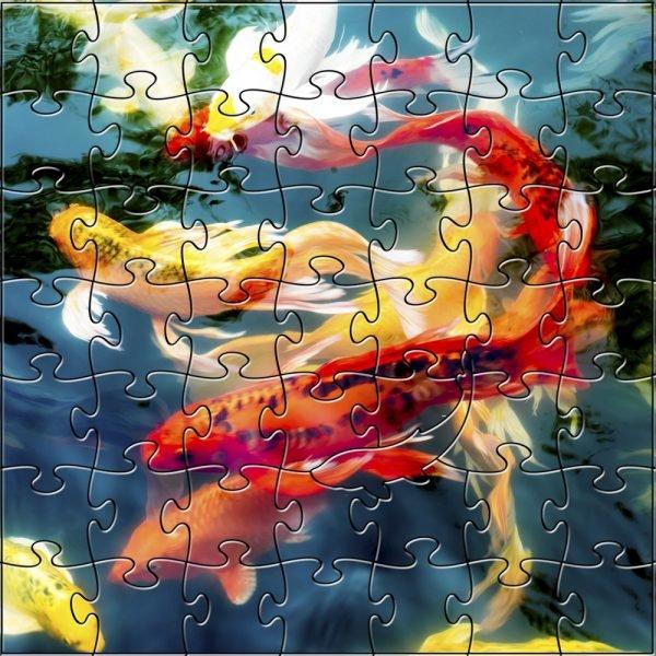 Koi Zen Puzzle