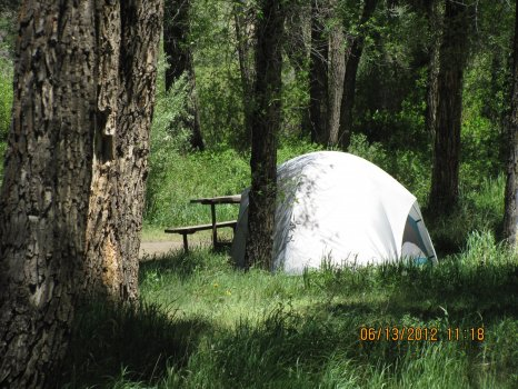 pioneer park campground host wanted - Campground Manager