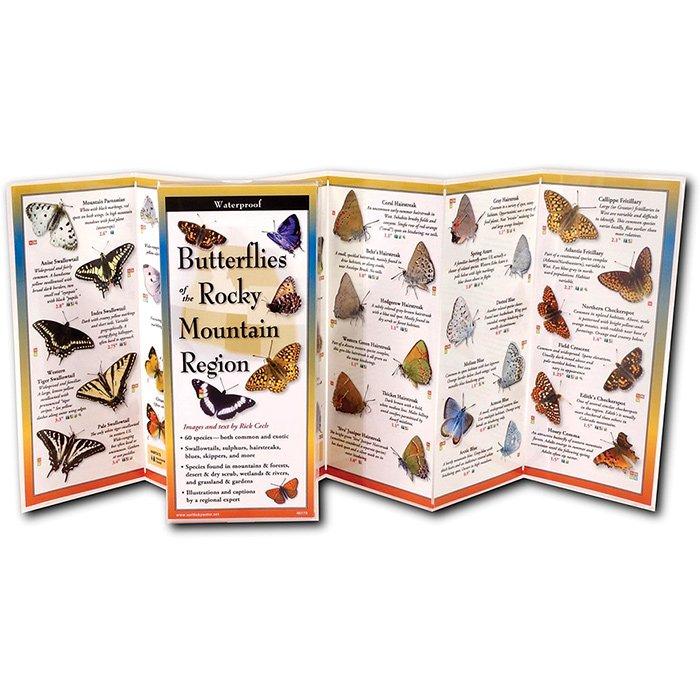 Butterflies of the Rocky Mountain Region Guide