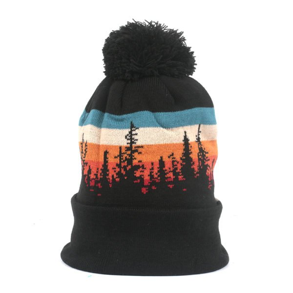 Locale Lodgepole Beanie