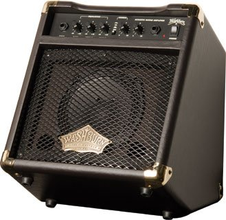 Washburn Acoustic Guitar Amp WA20U