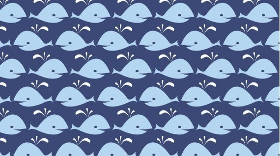 Dear Stella Navy Whales