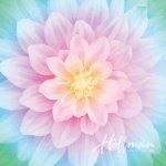 Big Dream Spectrum Opal Floral - Multi-Color Panel