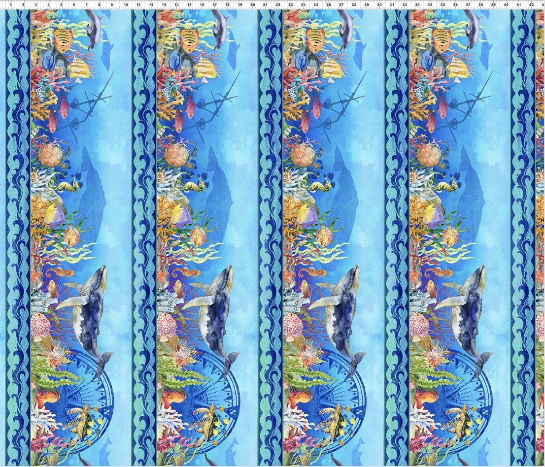 Calypso 2CAL-1 Border Print