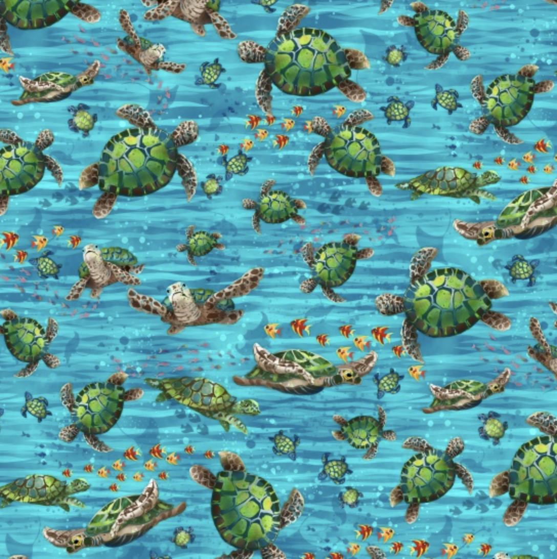 Ocean State Sea Turtles