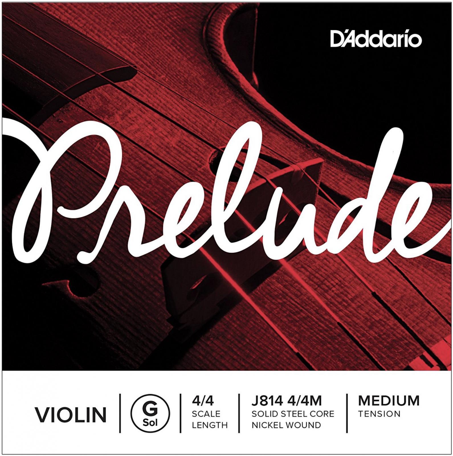 Violin String (G) | D'Addario Prelude