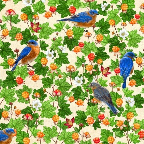 QC : Shop Hop 20 - Eastern Bluebird & Cloudberries