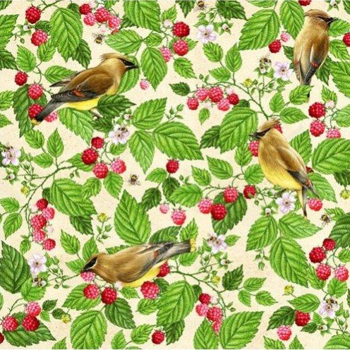 QC : Shop Hop 20 - Cedar Waxwing & Raspberries