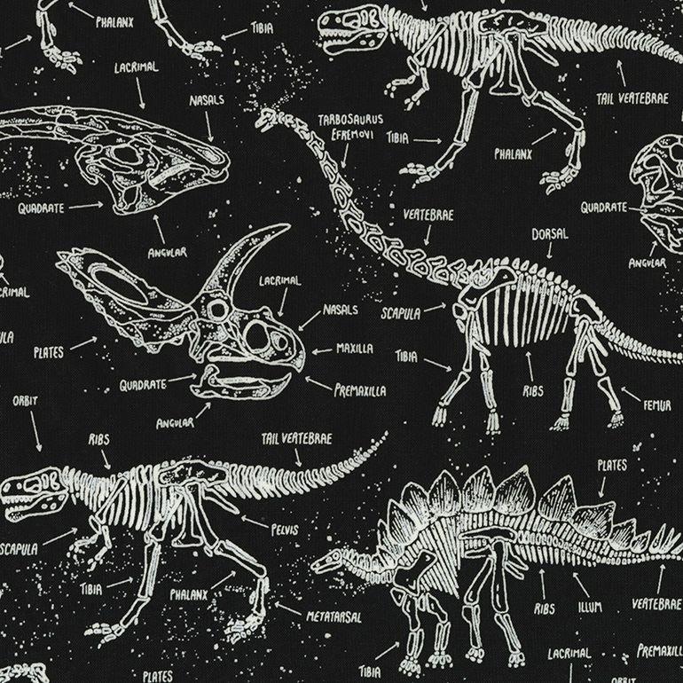QC : Dinosaur Skeletons - GLOW in the Dark (Black)