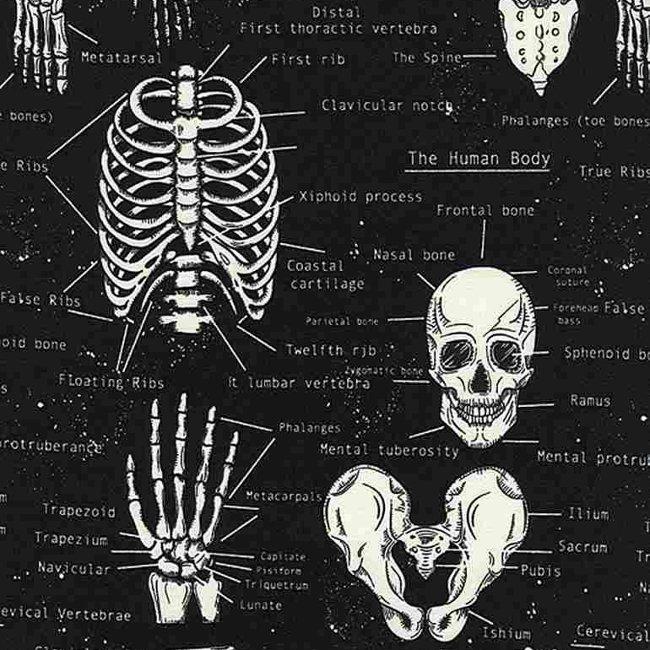 QC : Skeletons - GLOW in the Dark (Black)