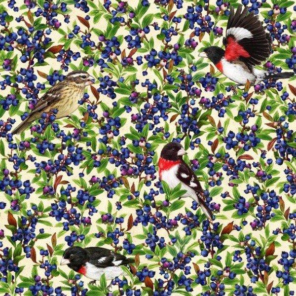 QC : Shop Hop 20 - Grosbeak & Blueberries