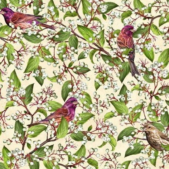QC : Shop Hop 20 - Purple Finch & Gray Dogwood