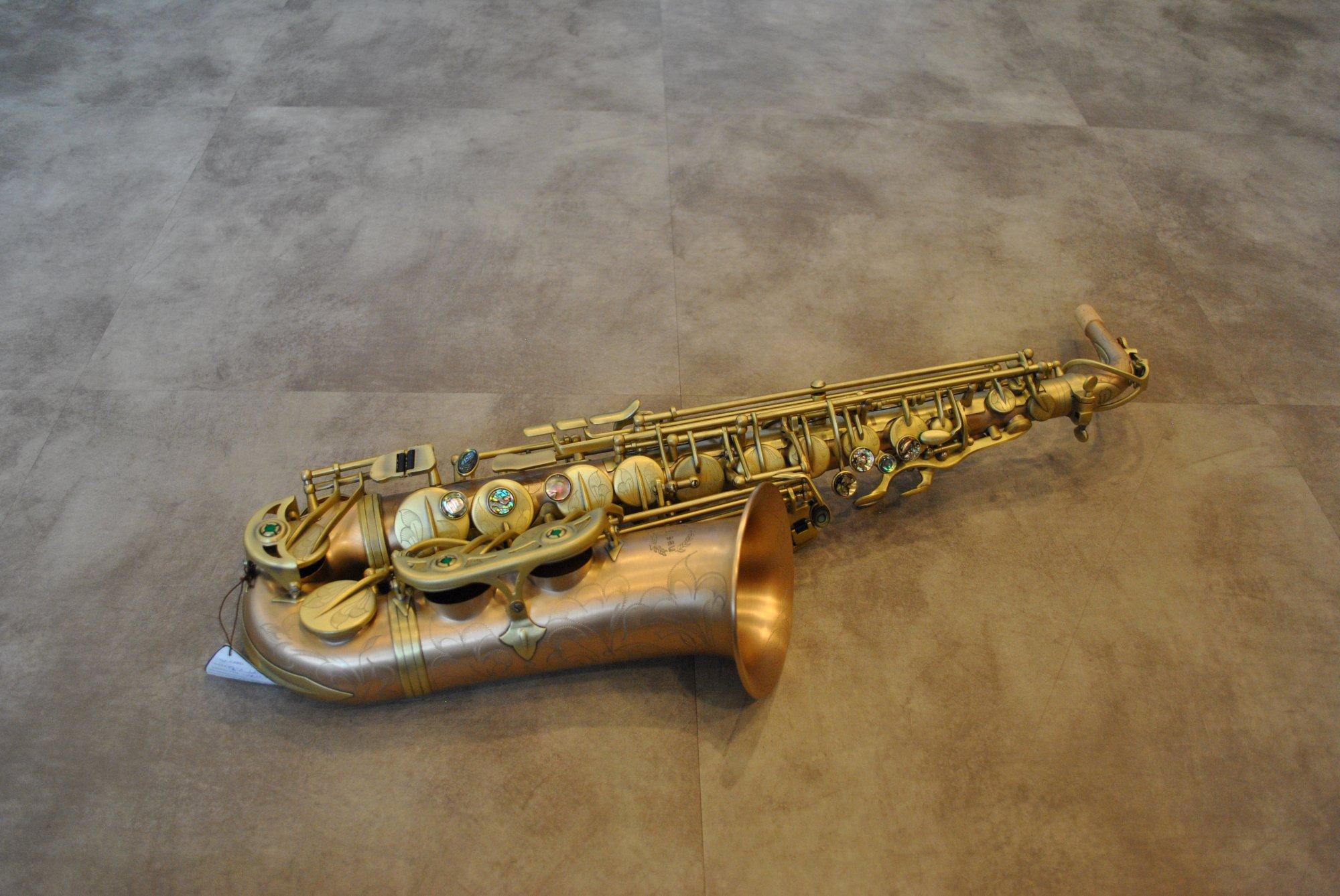 Chateau CAS-90VSM Professional Alto Saxophone - NEW