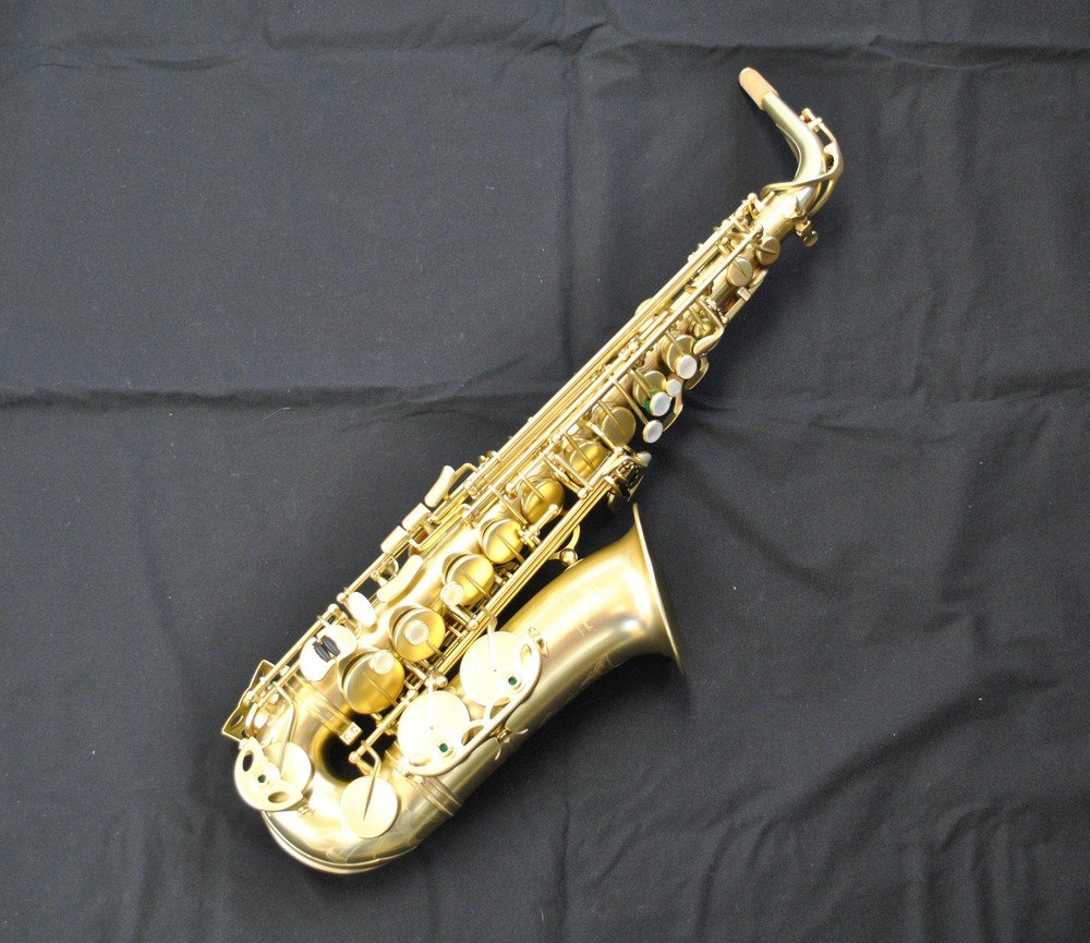 Hollywood Winds RV-A-MP Mike Phillips Signature Model Professional Alto Saxophone - NEW
