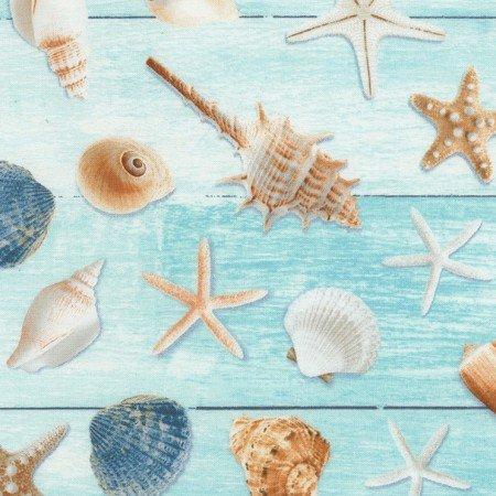 Aqua Seashells on wood
