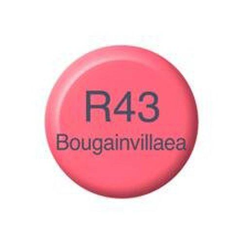 BOUGAINVILLAEA REFILL