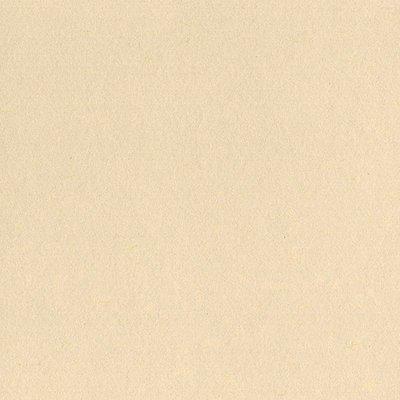 Cardstock - Fawn - Mono, 12x12 (Bazzill)