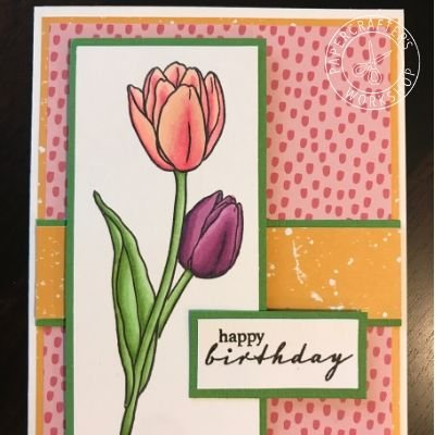 CLASS KIT:  Copic Colouring - World Peace Tulip