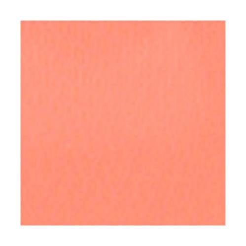 RedWing Spawn Net 22.9 ft x 2.75 IN. Peach