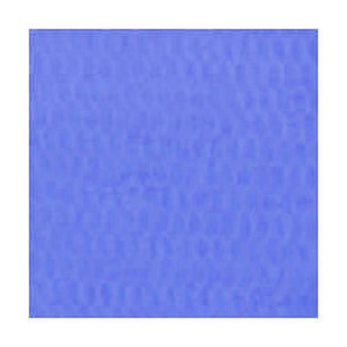 RedWing Spawn Net 22.9 ft x 2.75 IN Blue