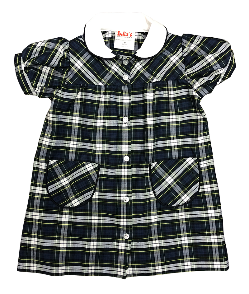 STM Button Front Dress - Plaid 53