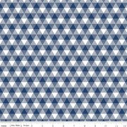 Land of Liberty Triangle Gingham Navy