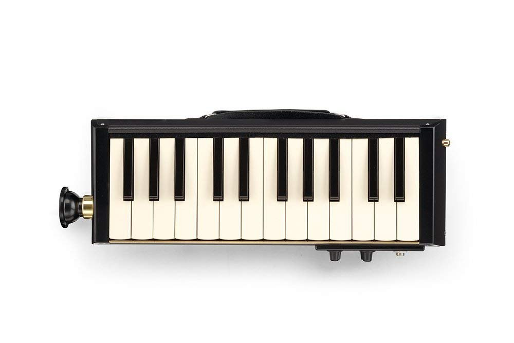 NEW Hammond Pro 24-B Amplified Bass Melodion 24 Key Melodica