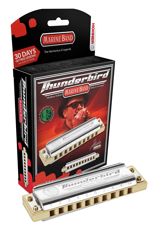 New Hohner Thunderbird Diatonic Harmonica Key of Low D
