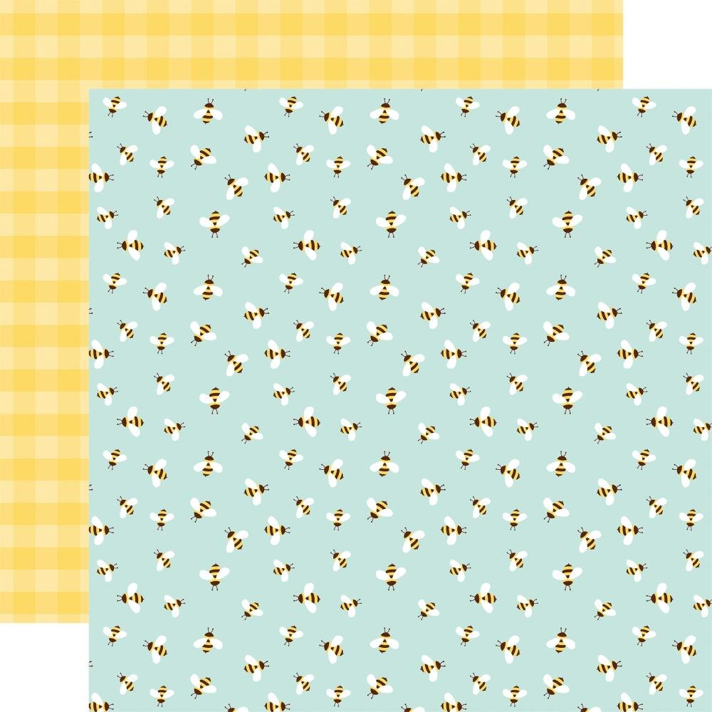 Welcome Spring Double-Sided Cardstock 12X12 3X4 Bumblebee Breeze