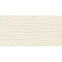 Bazzill Fourz Cardstock 12X12-French Vanilla/Grasscloth