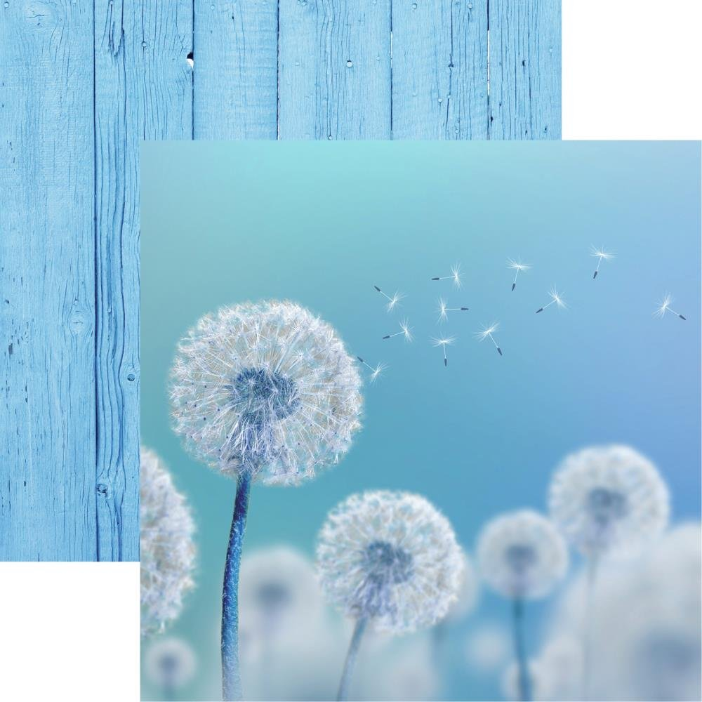 Wildflower Double-Sided Cardstock 12X12-Dandelion Wish