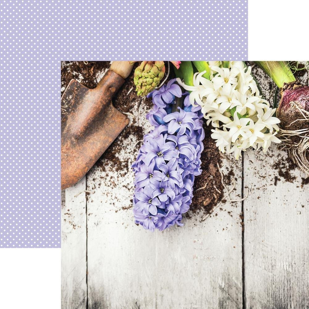 Growing Garden Double-Sided Cardstock 12X12-Lilac Hyacinth