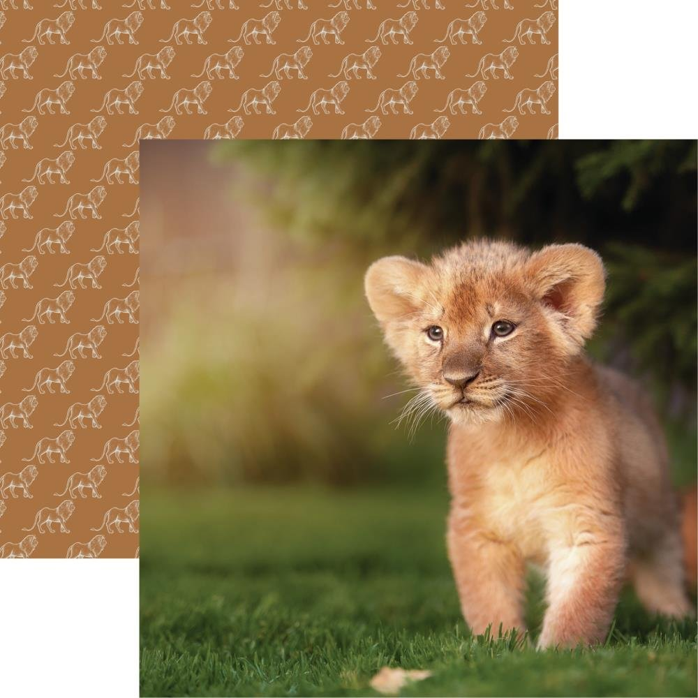 King Of The Jungle Double-Sided Cardstock 12X12-Lion Cub