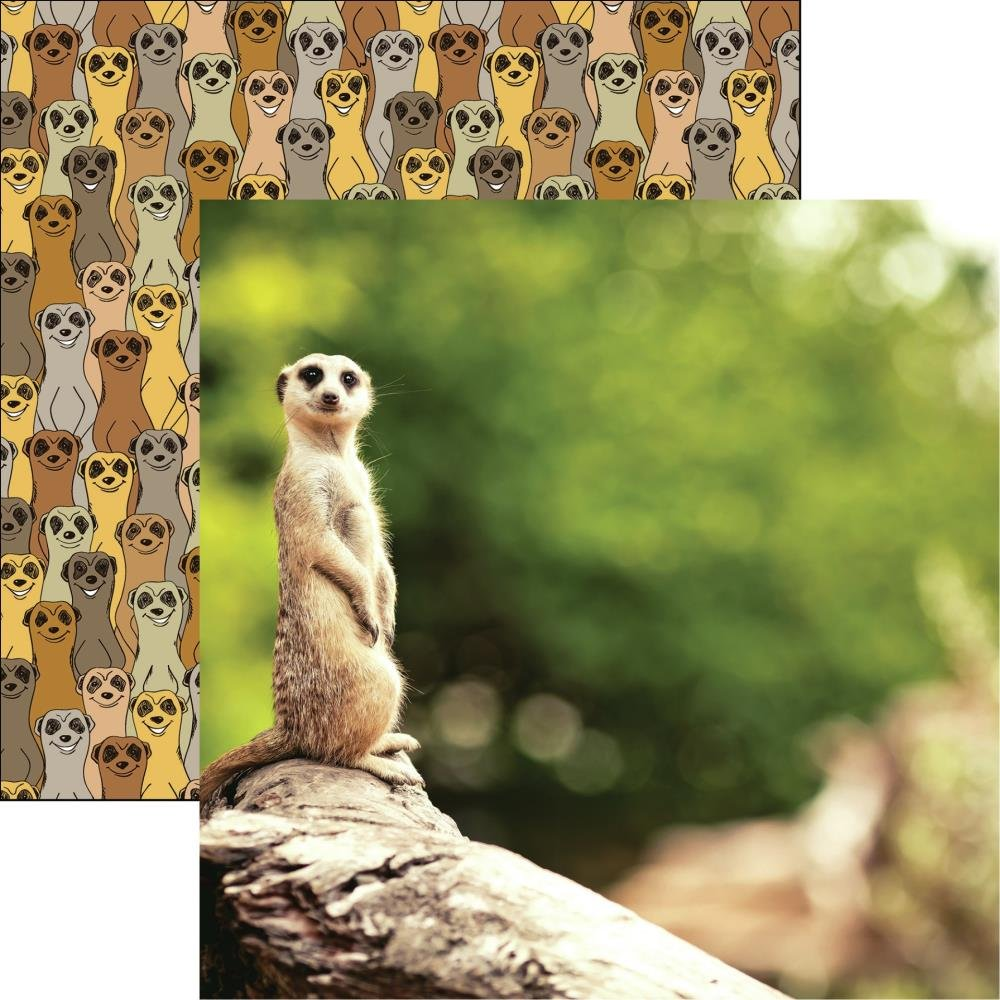 King Of The Jungle Double-Sided Cardstock 12X12-Meerkat