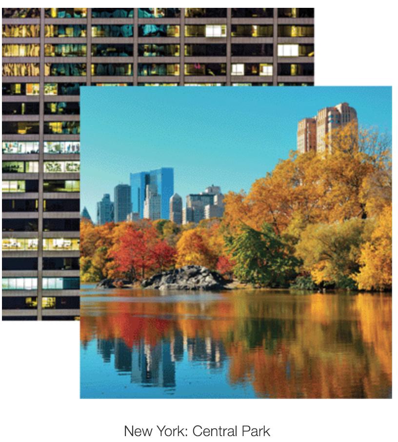 Rem New York Central Park