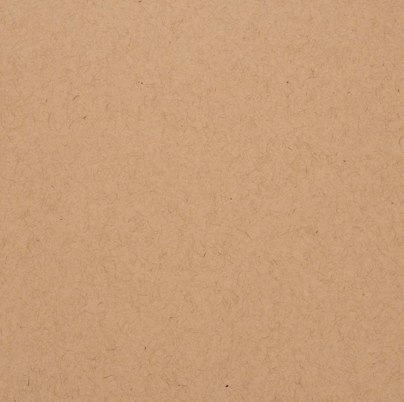 Bazzill Speckle Cardstock 12X12 Chip Stone