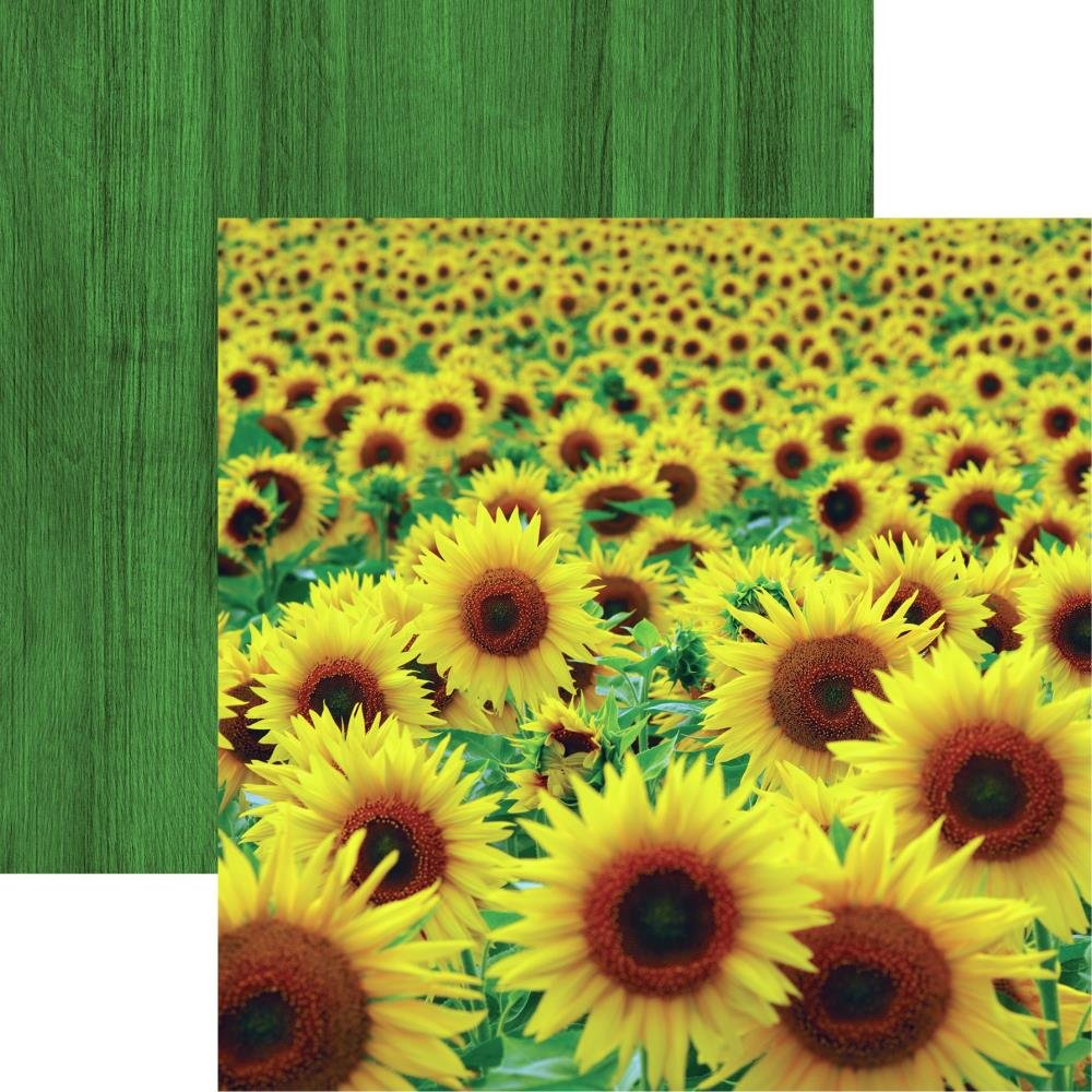 Wildflower Double-Sided Cardstock 12X12-Sunflower Field