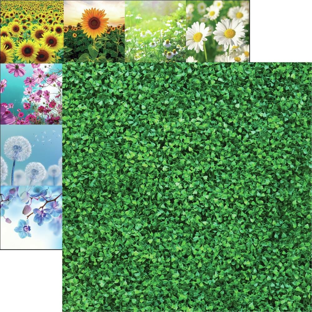 Wildflower Double-Sided Cardstock 12X12-Wall Of Ivy