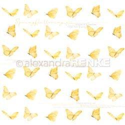 Butterfly 10.881